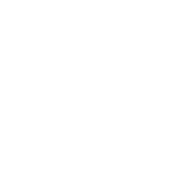 white filed international logo