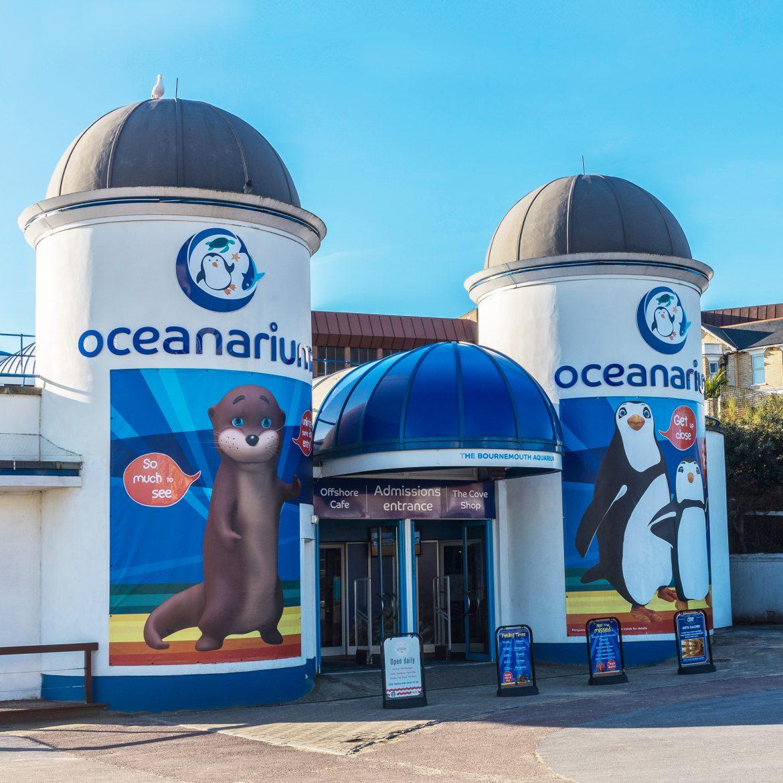 Oceanarium Branding