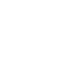 white ordernizers logo