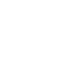 white Nannyworld logo