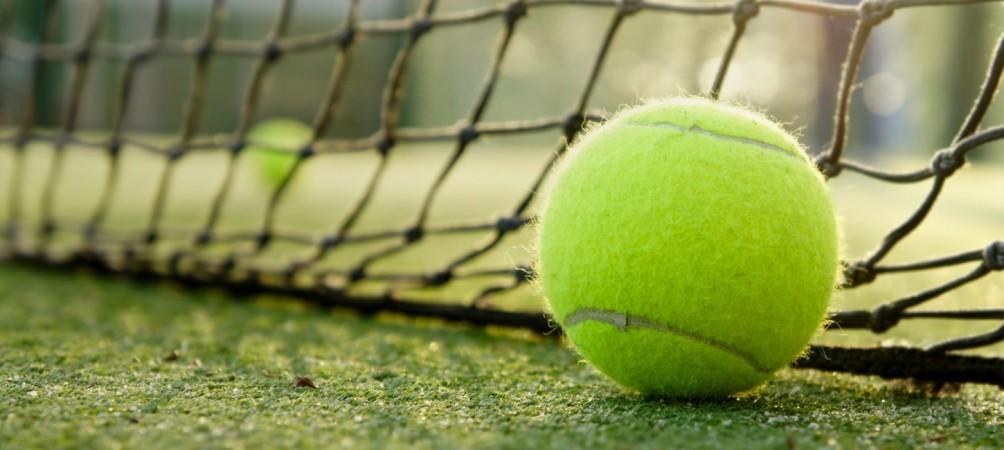 Tennis ball against a net
