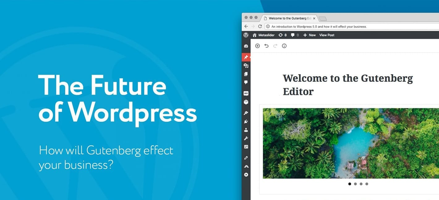 The future of WordPress & your business
