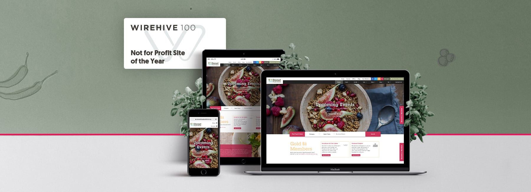 Award winning digital agency, wirehive 100 award for not-for-profit website of 2018